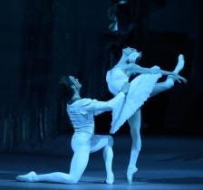 Bolshoi Ballet Live - Swan Lake 2020